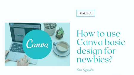 How to use Canva basic design for newbies ?