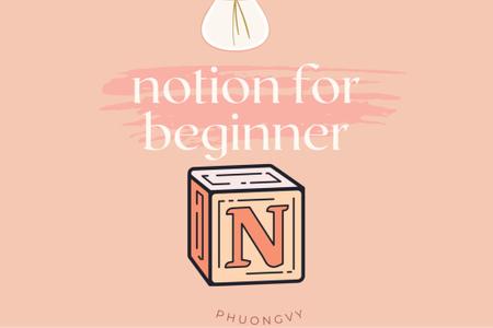 Notion for beginner
